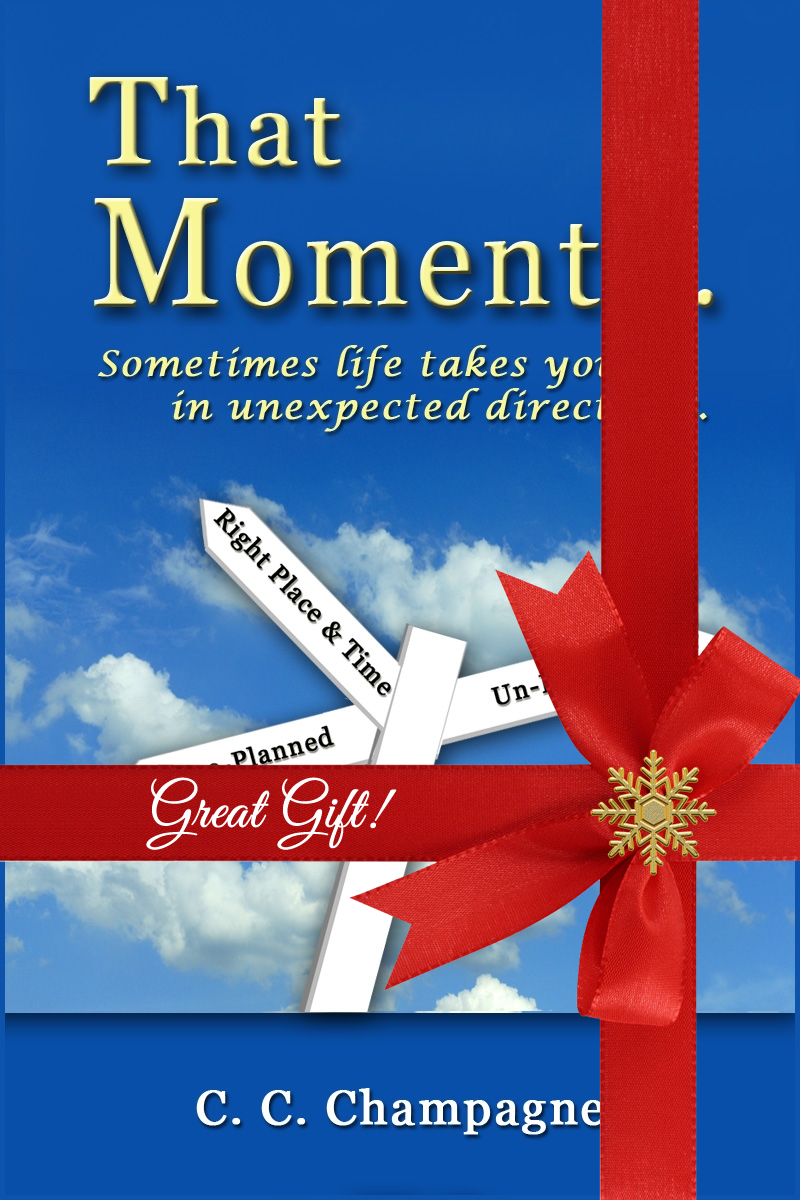 that-moment-cover-with-red-ribbon-snowflake